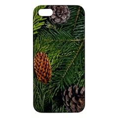 Branch Christmas Cone Evergreen Iphone 5s/ Se Premium Hardshell Case