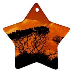 Trees Branches Sunset Sky Clouds Ornament (star)