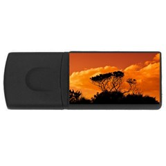 Trees Branches Sunset Sky Clouds Rectangular Usb Flash Drive