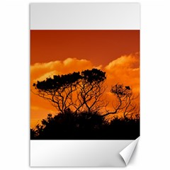 Trees Branches Sunset Sky Clouds Canvas 24  X 36