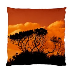 Trees Branches Sunset Sky Clouds Standard Cushion Case (two Sides)