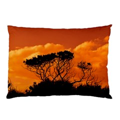 Trees Branches Sunset Sky Clouds Pillow Case