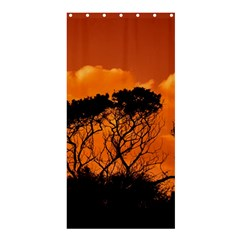 Trees Branches Sunset Sky Clouds Shower Curtain 36  X 72  (stall)