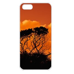 Trees Branches Sunset Sky Clouds Apple Iphone 5 Seamless Case (white)