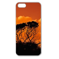 Trees Branches Sunset Sky Clouds Apple Seamless Iphone 5 Case (clear)