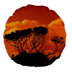 Trees Branches Sunset Sky Clouds Large 18  Premium Round Cushions