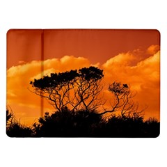 Trees Branches Sunset Sky Clouds Samsung Galaxy Tab 10 1  P7500 Flip Case
