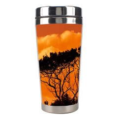 Trees Branches Sunset Sky Clouds Stainless Steel Travel Tumblers