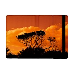 Trees Branches Sunset Sky Clouds Ipad Mini 2 Flip Cases