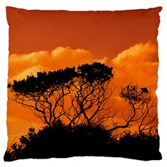 Trees Branches Sunset Sky Clouds Large Flano Cushion Case (two Sides)