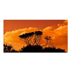 Trees Branches Sunset Sky Clouds Satin Shawl