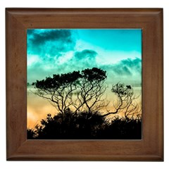 Trees Branches Branch Nature Framed Tiles