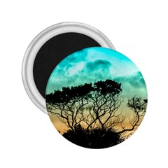 Trees Branches Branch Nature 2 25  Magnets