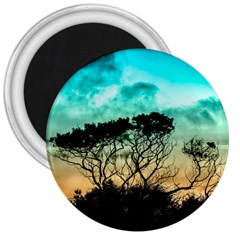 Trees Branches Branch Nature 3  Magnets