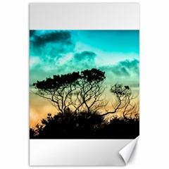 Trees Branches Branch Nature Canvas 20  X 30