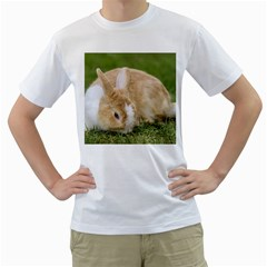 Beautiful Blue Eyed Bunny On Green Grass Men s T Shirt (white) (two Sided)