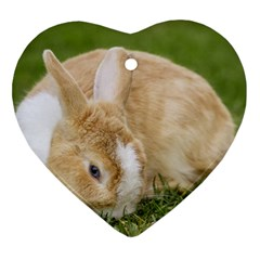 Beautiful Blue Eyed Bunny On Green Grass Heart Ornament (two Sides)