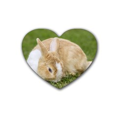 Beautiful Blue Eyed Bunny On Green Grass Heart Coaster (4 Pack)
