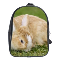Beautiful Blue Eyed Bunny On Green Grass School Bag (large)