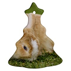 Beautiful Blue Eyed Bunny On Green Grass Christmas Tree Ornament (two Sides)