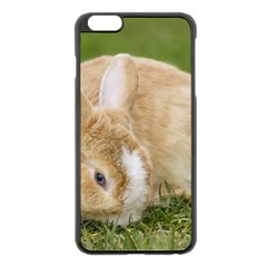 Beautiful Blue Eyed Bunny On Green Grass Apple Iphone 6 Plus/6s Plus Black Enamel Case