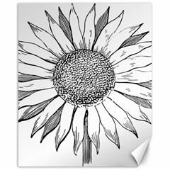 Sunflower Flower Line Art Summer Canvas 16  X 20