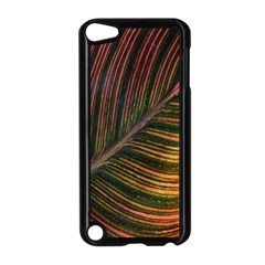 Leaf Colorful Nature Orange Season Apple Ipod Touch 5 Case (black)