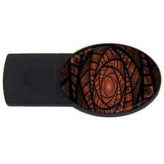 Fractal Red Brown Glass Fantasy Usb Flash Drive Oval (2 Gb)