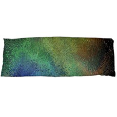 Frosted Glass Background Psychedelic Body Pillow Case Dakimakura (two Sides)
