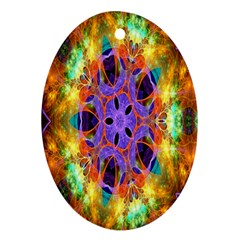 Kaleidoscope Pattern Ornament Oval Ornament (two Sides)