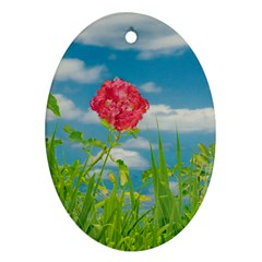 Beauty Nature Scene Photo Oval Ornament (two Sides)