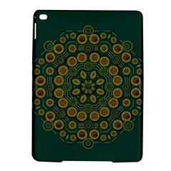 Snow Flower In A Calm Place Of Eternity And Peace Ipad Air 2 Hardshell Cases