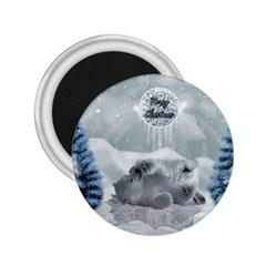 Cute Polar Bear Baby, Merry Christmas 2 25  Magnets