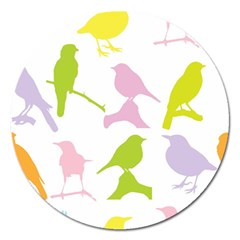 Birds Colourful Background Magnet 5  (round)