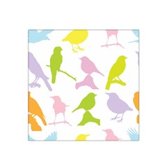 Birds Colourful Background Satin Bandana Scarf