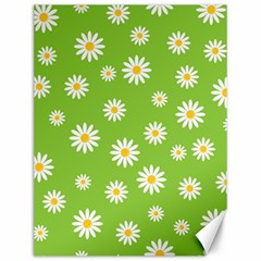Daisy Flowers Floral Wallpaper Canvas 12  X 16