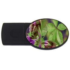 Arrangement Butterfly Aesthetics Usb Flash Drive Oval (2 Gb)