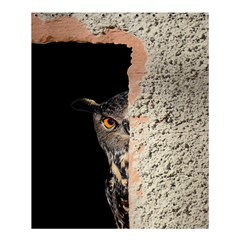 Owl Hiding Peeking Peeping Peek Shower Curtain 60  X 72  (medium)