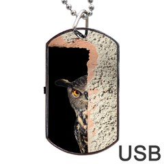 Owl Hiding Peeking Peeping Peek Dog Tag Usb Flash (two Sides)