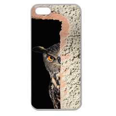 Owl Hiding Peeking Peeping Peek Apple Seamless Iphone 5 Case (clear)