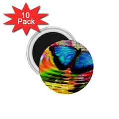 Blue Morphofalter Butterfly Insect 1 75  Magnets (10 Pack)