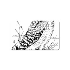 Animal Bird Forest Nature Owl Magnet (name Card)