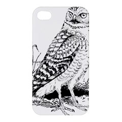 Animal Bird Forest Nature Owl Apple Iphone 4/4s Hardshell Case