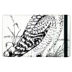 Animal Bird Forest Nature Owl Apple Ipad 2 Flip Case