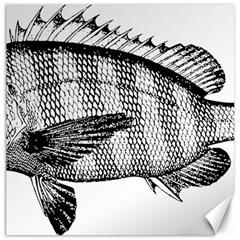 Animal Fish Ocean Sea Canvas 16  X 16