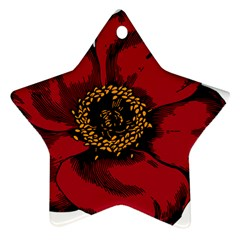 Floral Flower Petal Plant Star Ornament (two Sides)