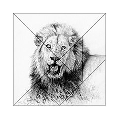 Lion Wildlife Art And Illustration Pencil Acrylic Tangram Puzzle (6  X 6 )