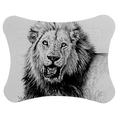 Lion Wildlife Art And Illustration Pencil Jigsaw Puzzle Photo Stand (bow)