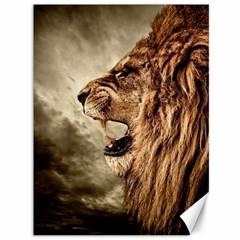 Roaring Lion Canvas 36  X 48