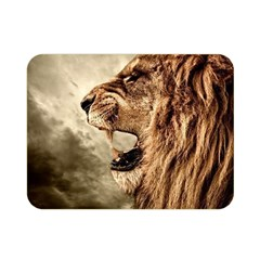 Roaring Lion Double Sided Flano Blanket (mini)